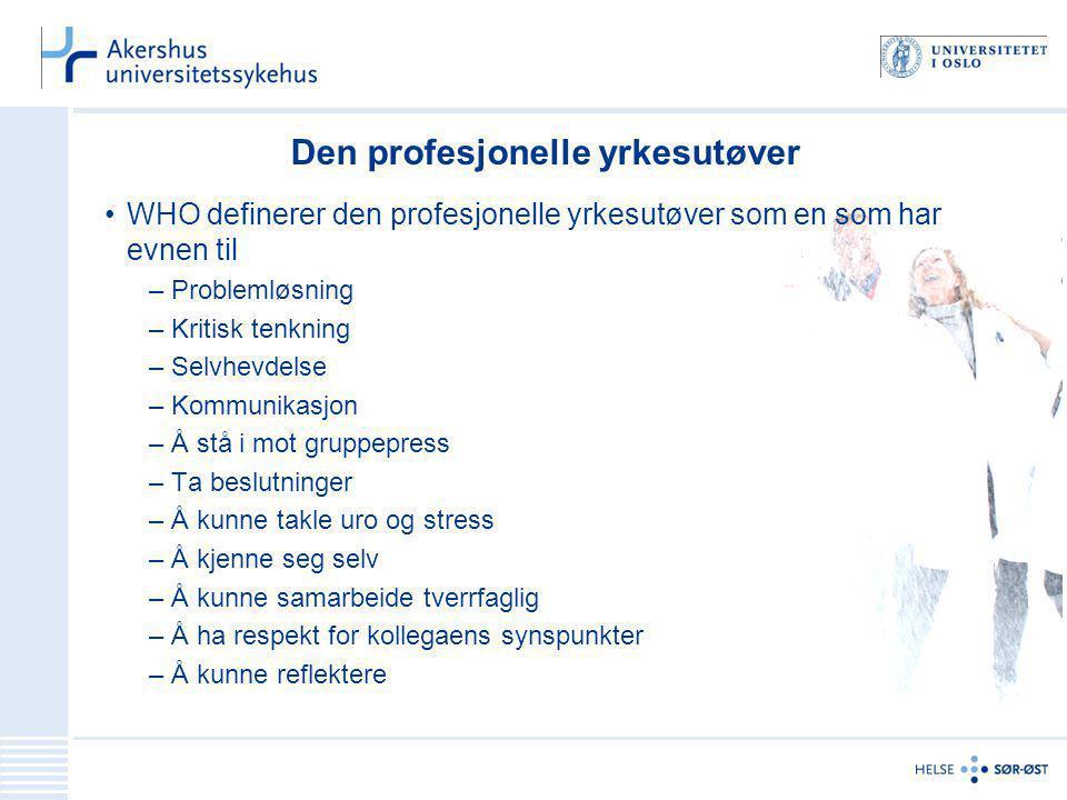 Den profesjonelle yrkesutøver