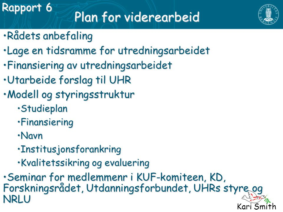 Plan for viderearbeid Rapport 6 Rådets anbefaling