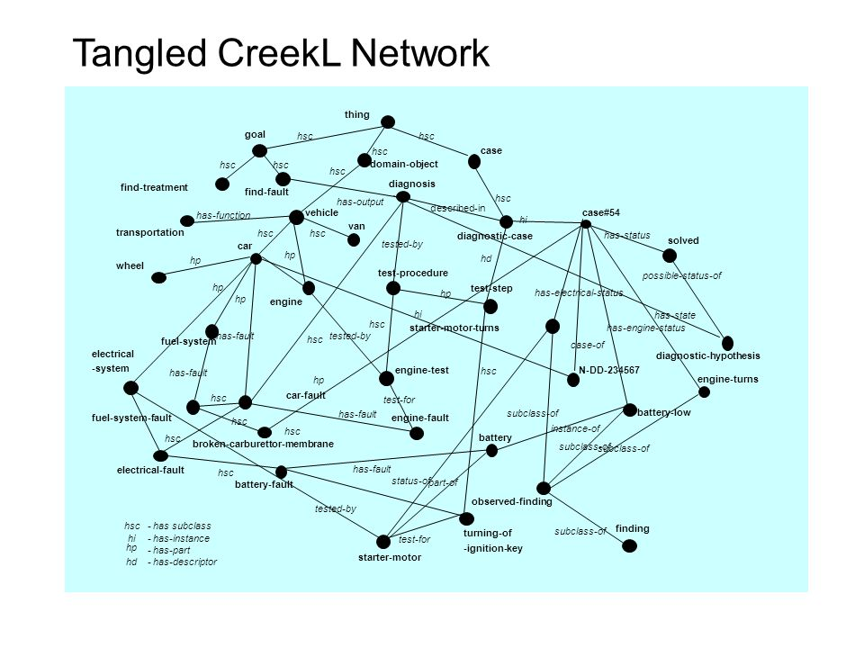 Tangled CreekL Network