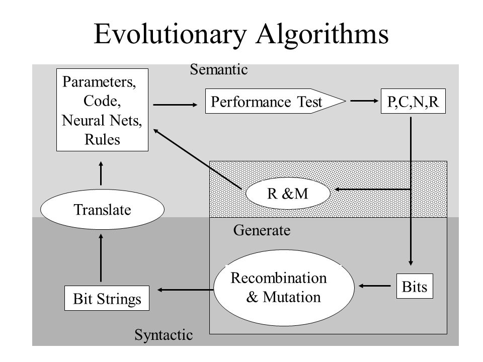 Evolutionary Algorithms