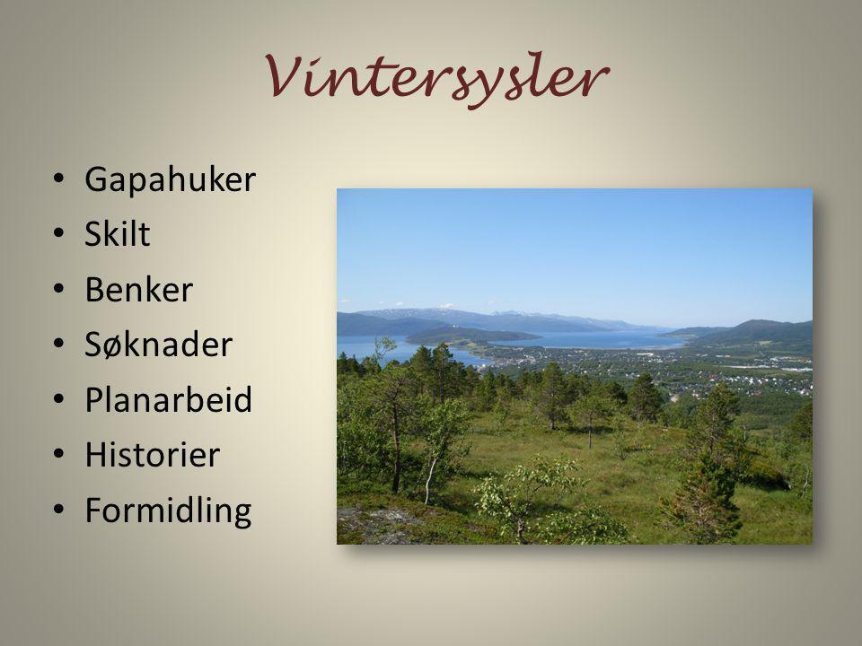 Vintersysler Gapahuker Skilt Benker Søknader Planarbeid Historier