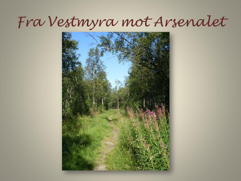 Fra Vestmyra mot Arsenalet