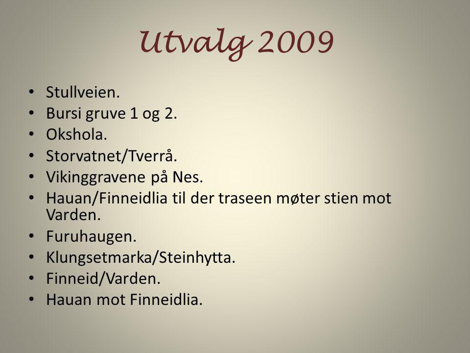 Utvalg 2009 Stullveien. Bursi gruve 1 og 2. Okshola.