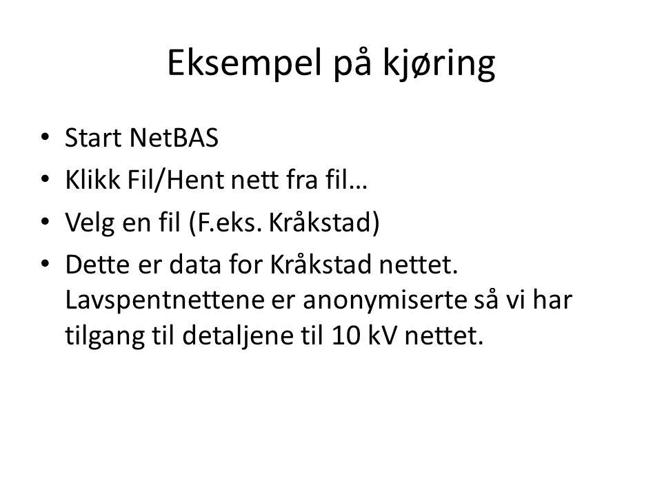 Eksempel på kjøring Start NetBAS Klikk Fil/Hent nett fra fil…