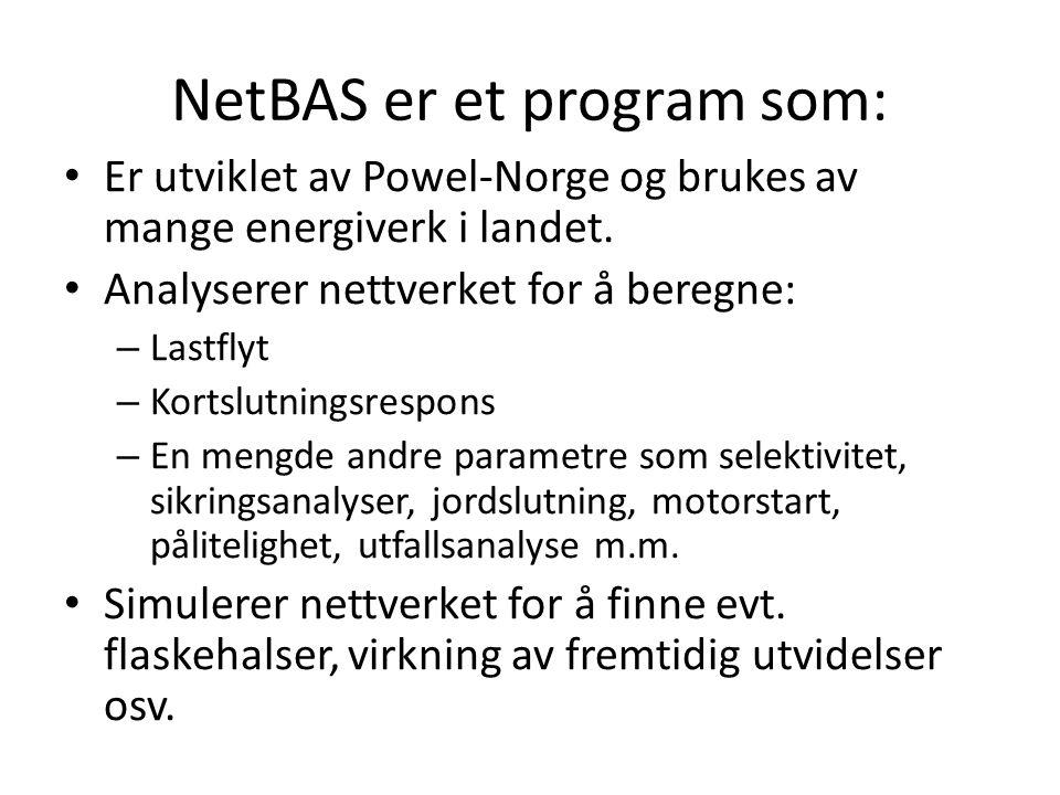 NetBAS er et program som: