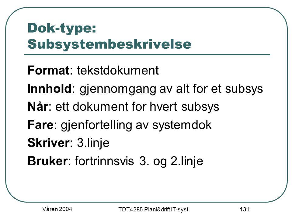 Dok-type: Subsystembeskrivelse