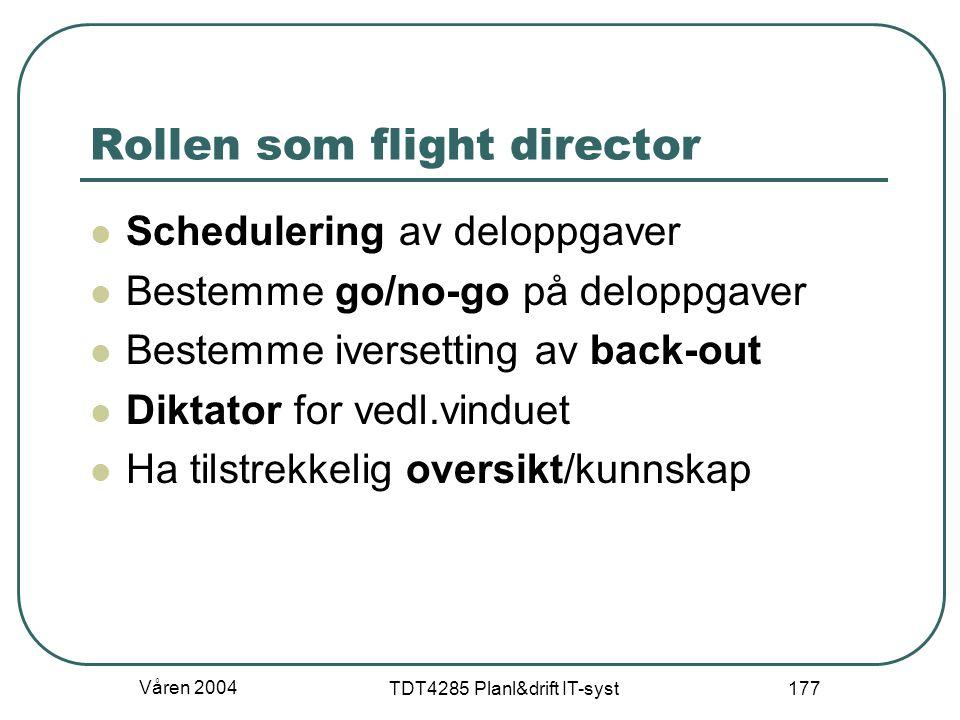 Rollen som flight director