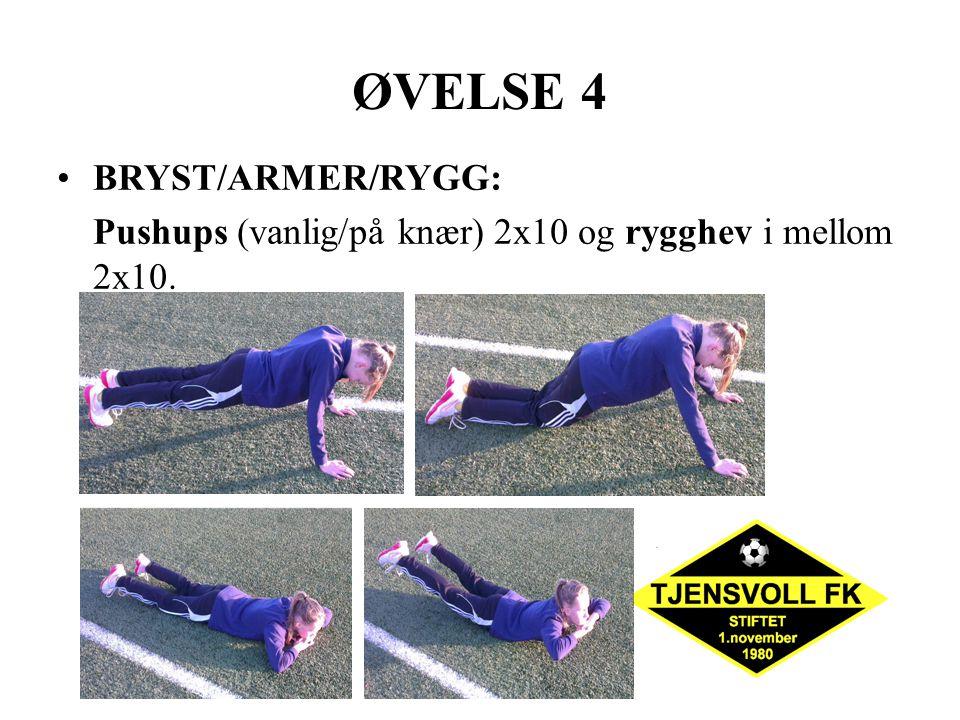 ØVELSE 4 BRYST/ARMER/RYGG: