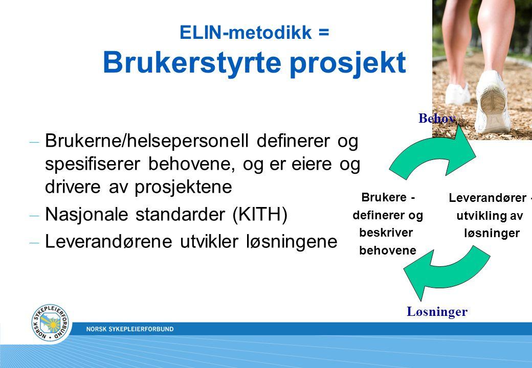 ELIN-metodikk = Brukerstyrte prosjekt