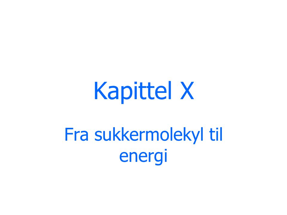 Fra sukkermolekyl til energi