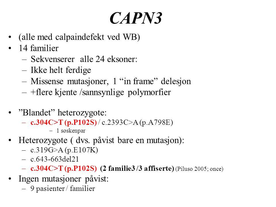CAPN3 (alle med calpaindefekt ved WB) 14 familier