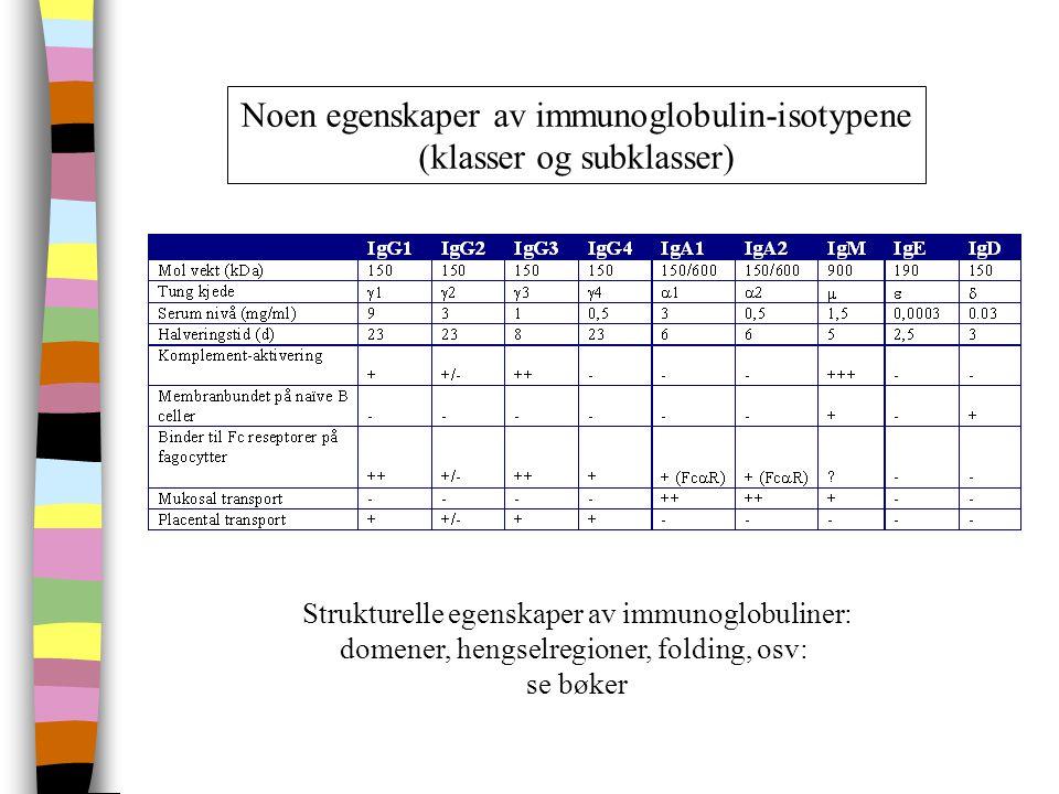Noen egenskaper av immunoglobulin-isotypene (klasser og subklasser)