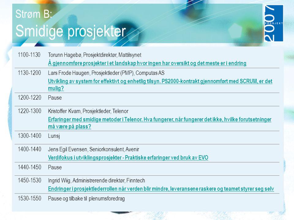 Strøm B: Smidige prosjekter