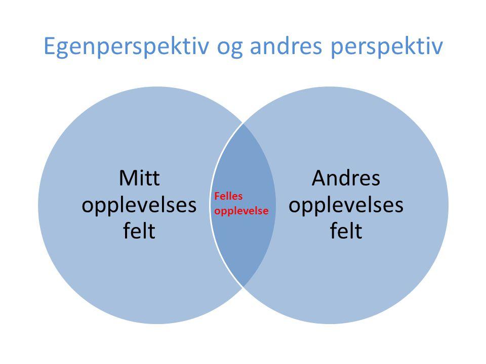 Egenperspektiv og andres perspektiv