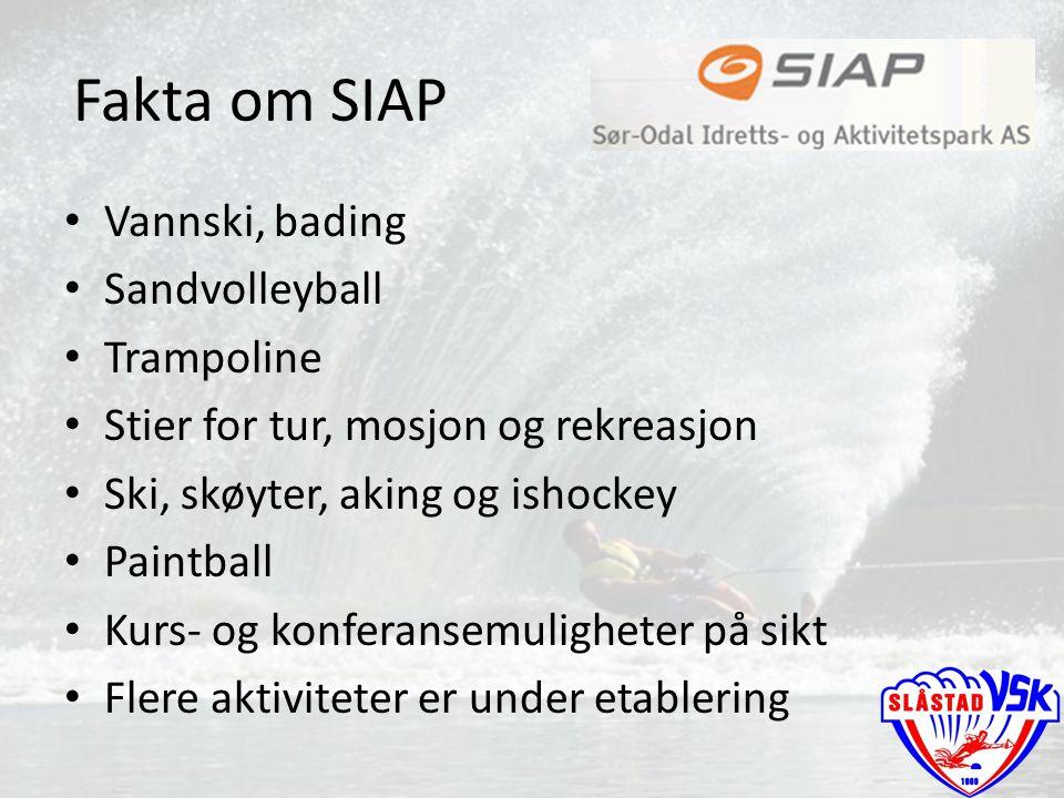 Stier for tur, mosjon og rekreasjon Ski, skøyter, aking og ishockey