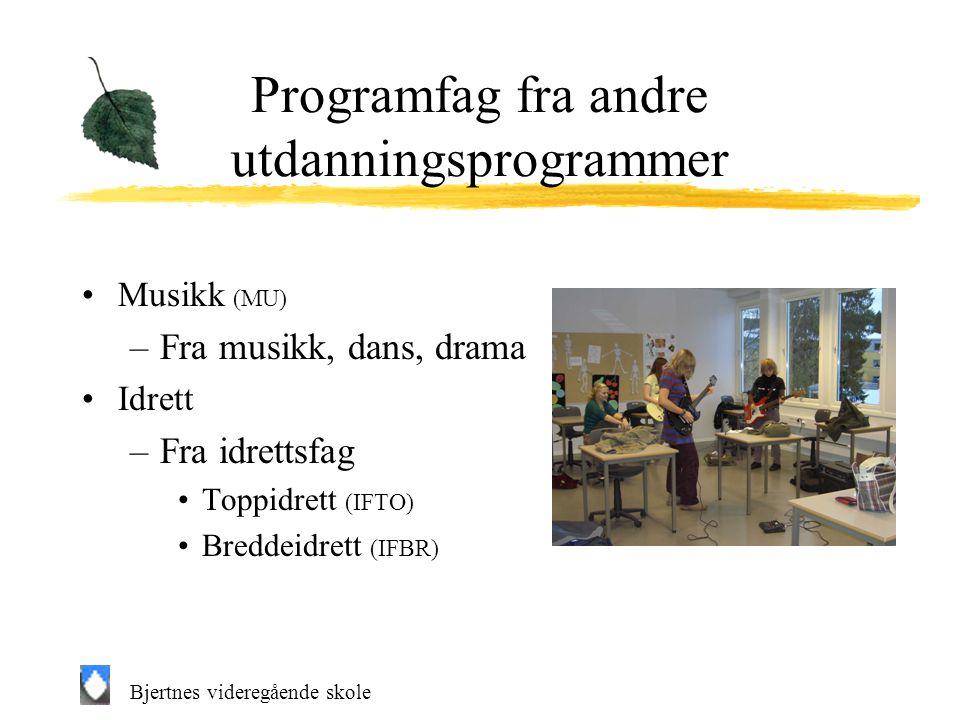 Programfag fra andre utdanningsprogrammer