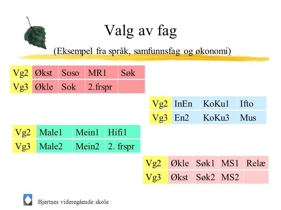 Valg av fag (Eksempel fra språk, samfunnsfag og økonomi)
