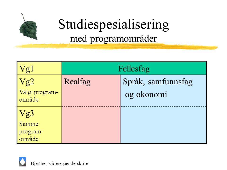 Studiespesialisering med programområder