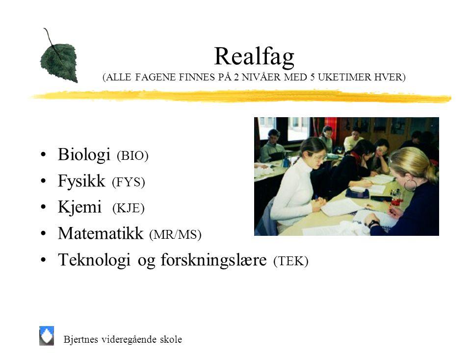 Realfag (ALLE FAGENE FINNES PÅ 2 NIVÅER MED 5 UKETIMER HVER)
