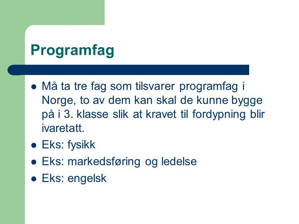 Programfag