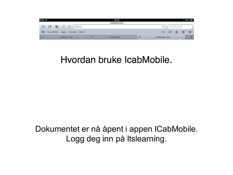 Dokumentet er nå åpent i appen ICabMobile.