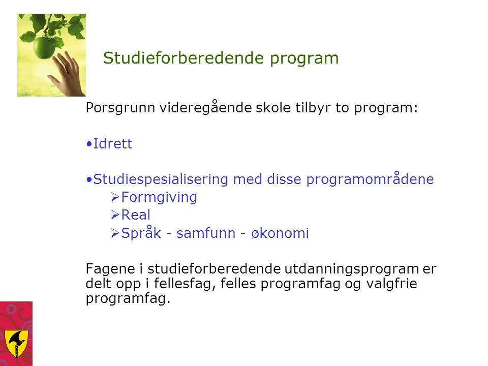 Studieforberedende program