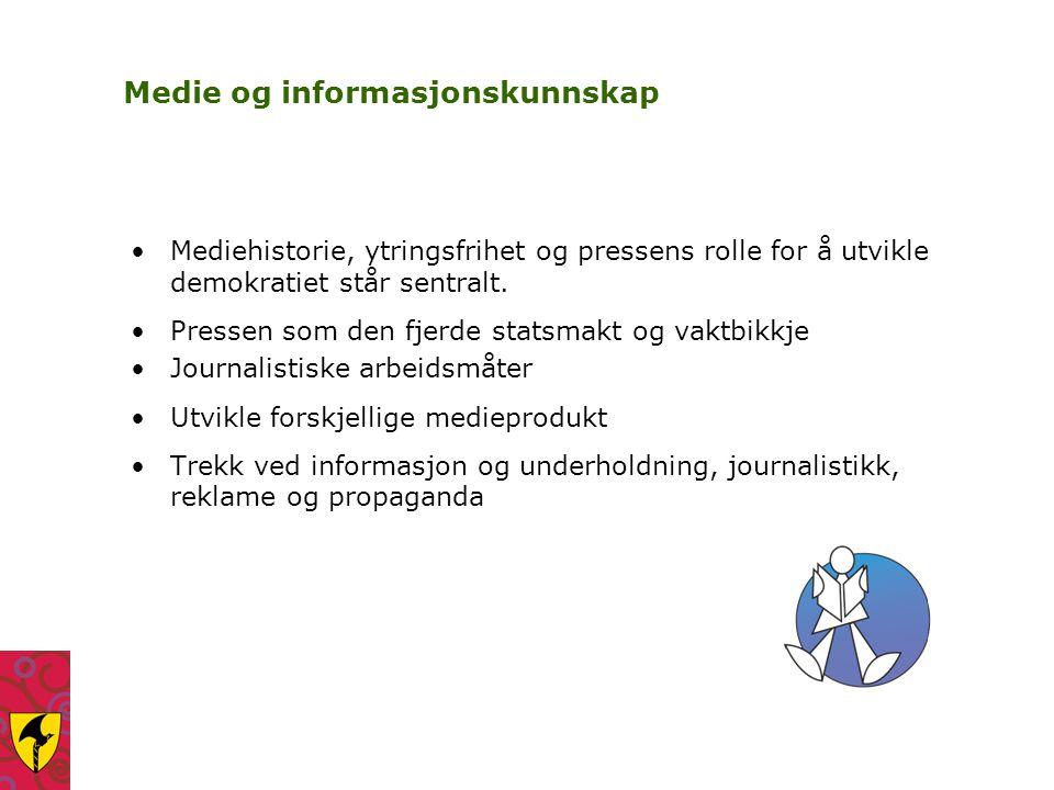 Medie og informasjonskunnskap