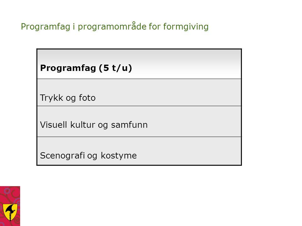 Programfag i programområde for formgiving