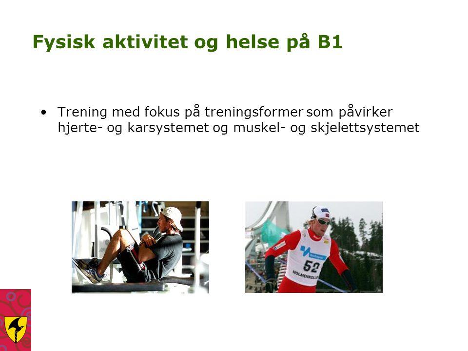 Fysisk aktivitet og helse på B1