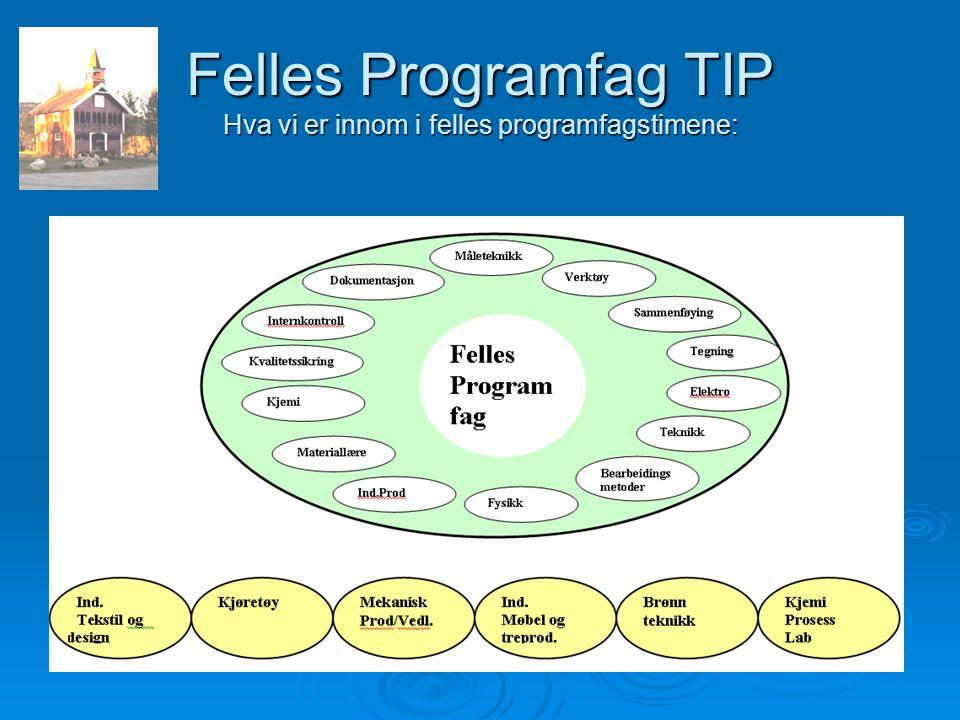 Felles Programfag TIP Hva vi er innom i felles programfagstimene: