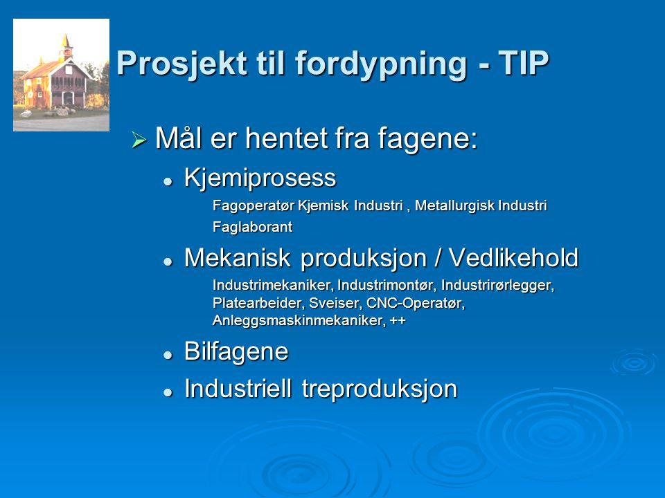 Prosjekt til fordypning - TIP