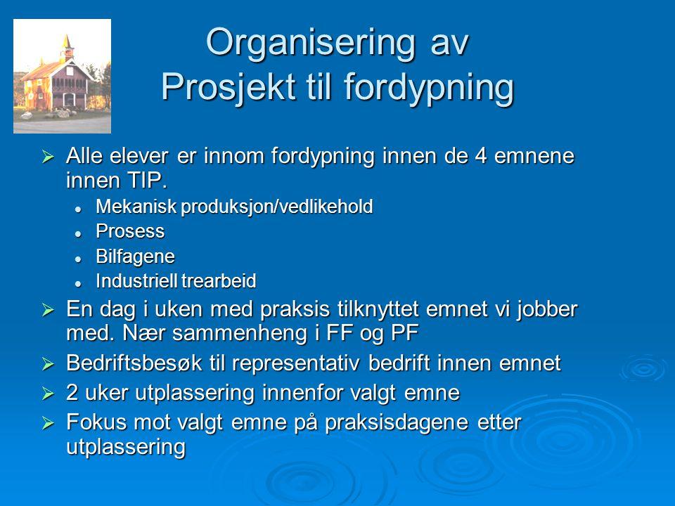 Organisering av Prosjekt til fordypning