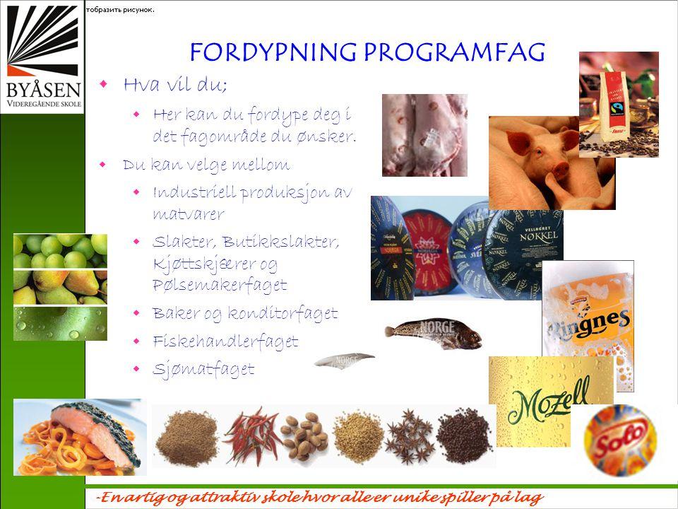 FORDYPNING PROGRAMFAG