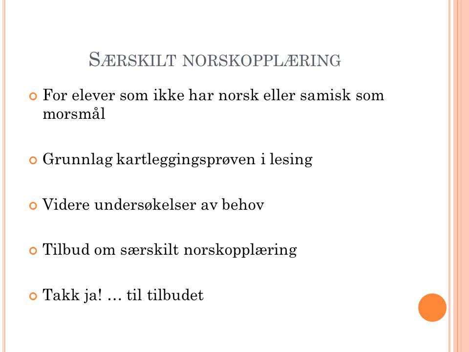 Særskilt norskopplæring