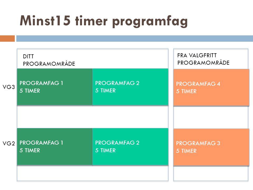 Minst15 timer programfag