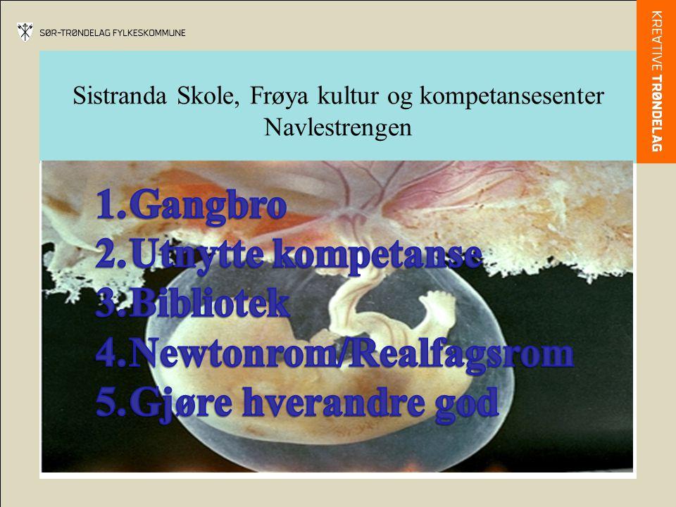 Sistranda Skole, Frøya kultur og kompetansesenter Navlestrengen