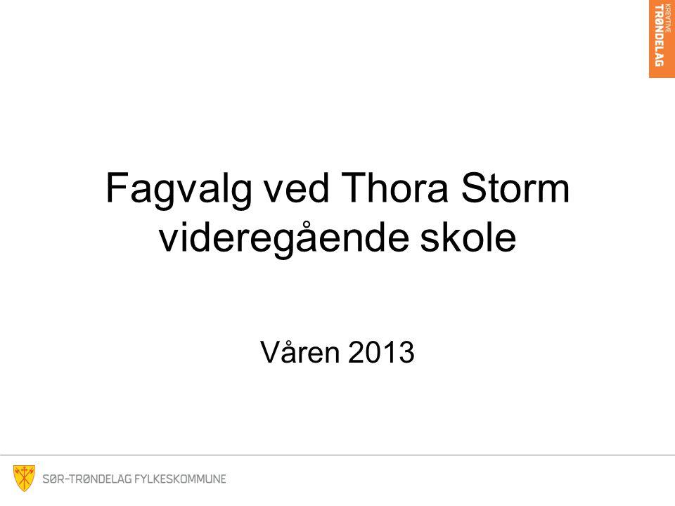 Fagvalg ved Thora Storm videregående skole