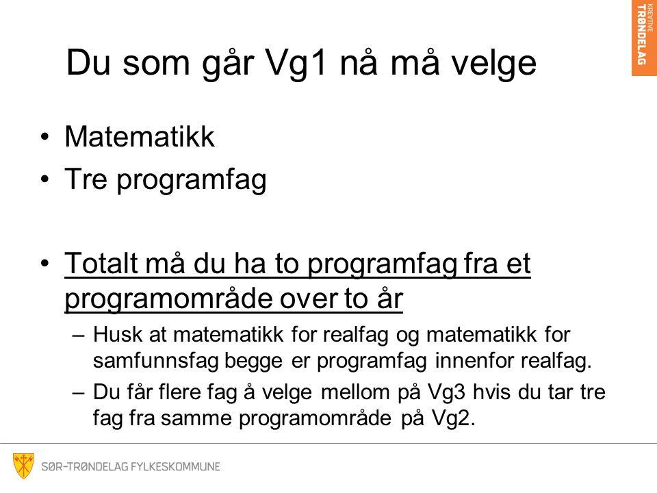 Du som går Vg1 nå må velge Matematikk Tre programfag