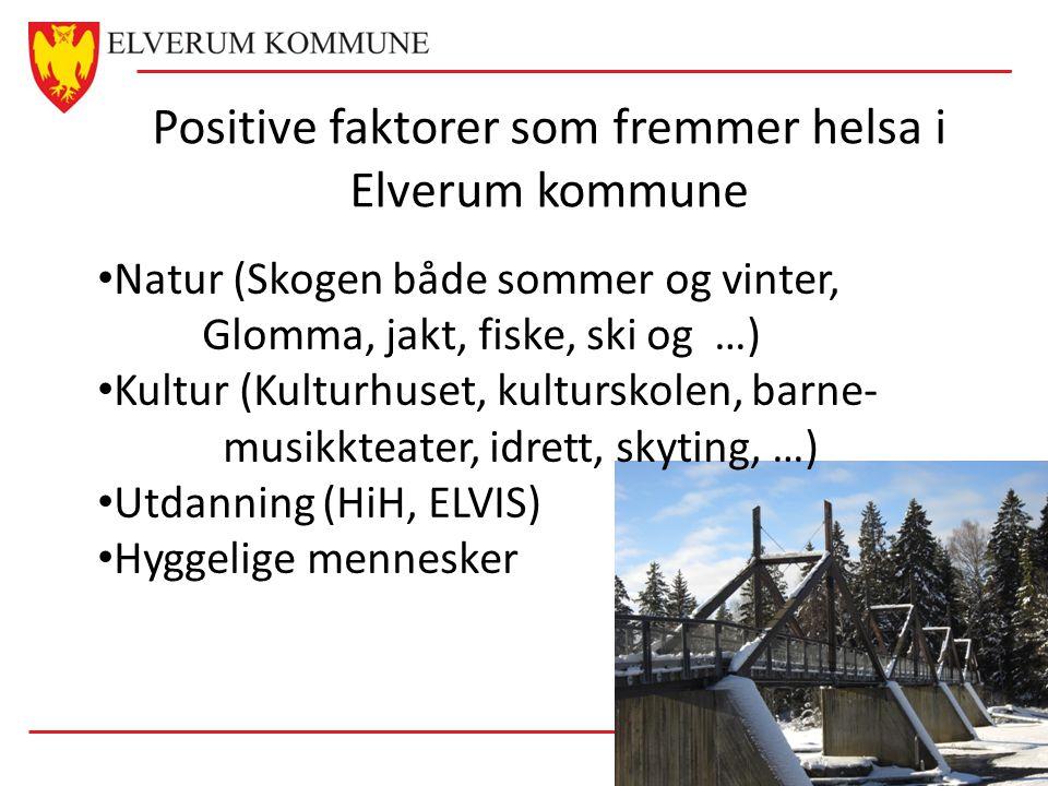 Positive faktorer som fremmer helsa i Elverum kommune