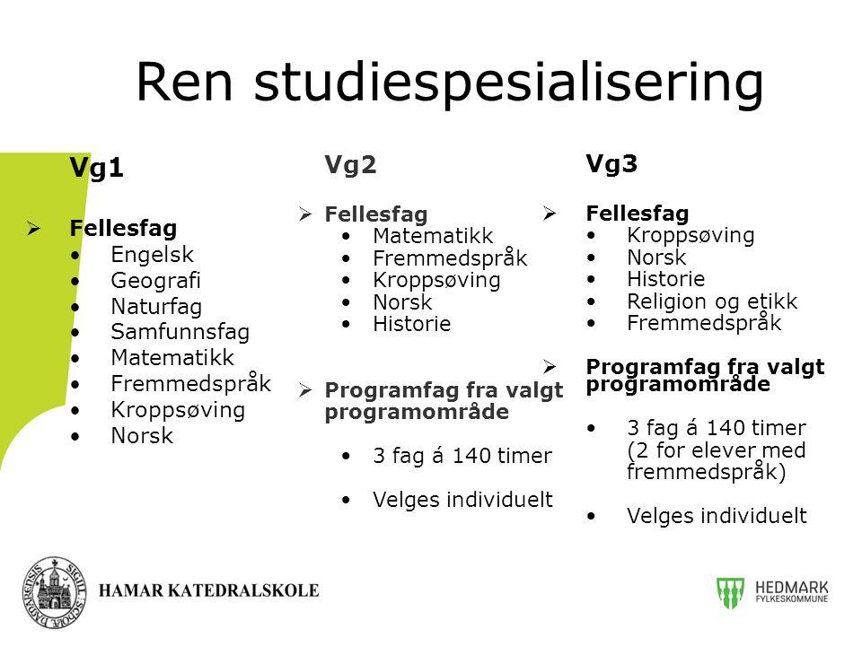 Ren studiespesialisering