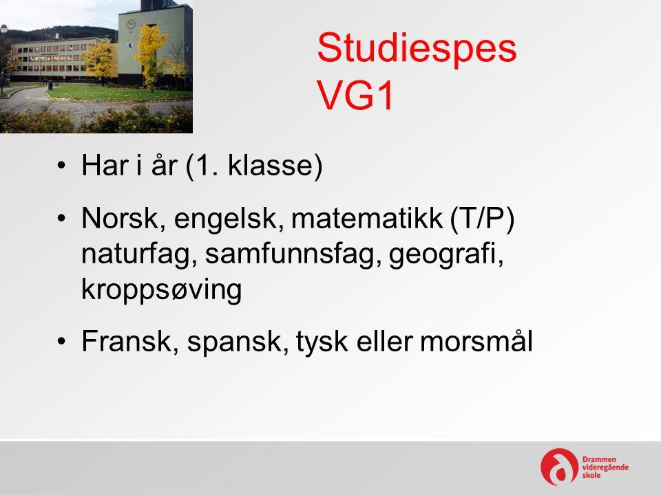 Studiespes VG1 Har i år (1. klasse)