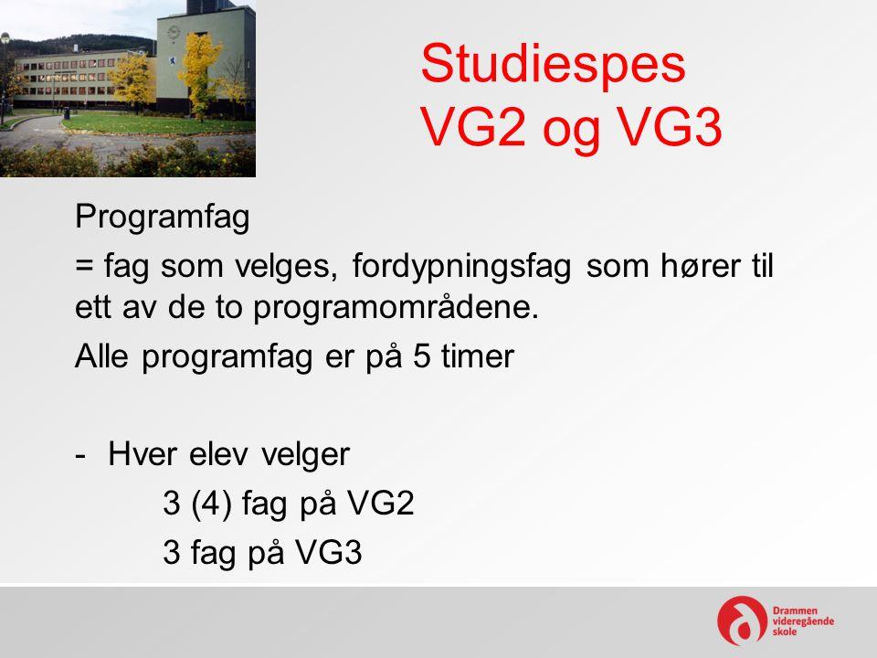 Studiespes VG2 og VG3 Programfag
