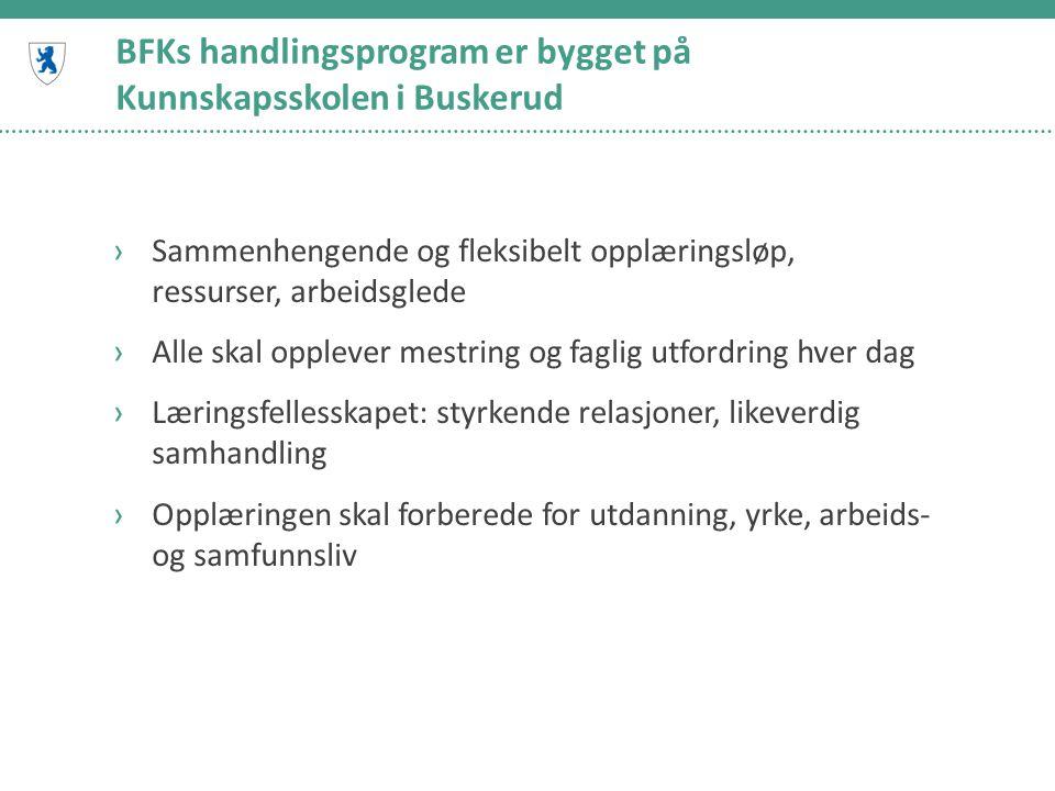 BFKs handlingsprogram er bygget på Kunnskapsskolen i Buskerud