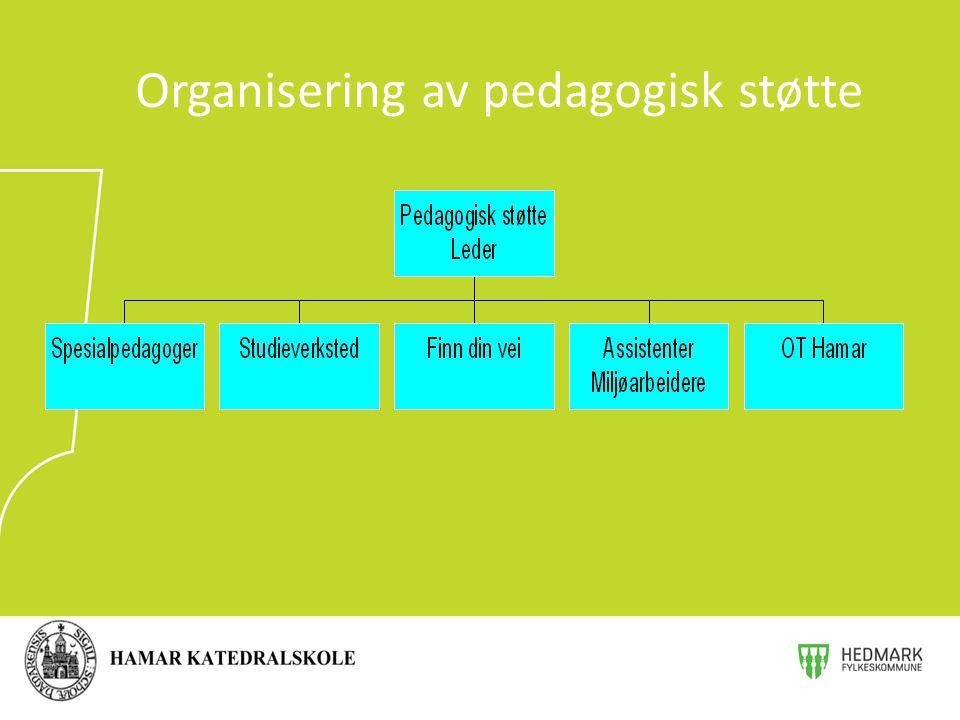 Organisering av pedagogisk støtte