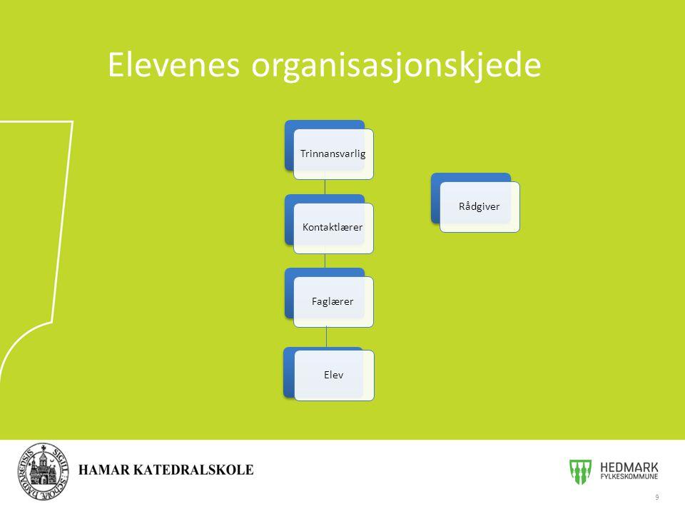 Elevenes organisasjonskjede