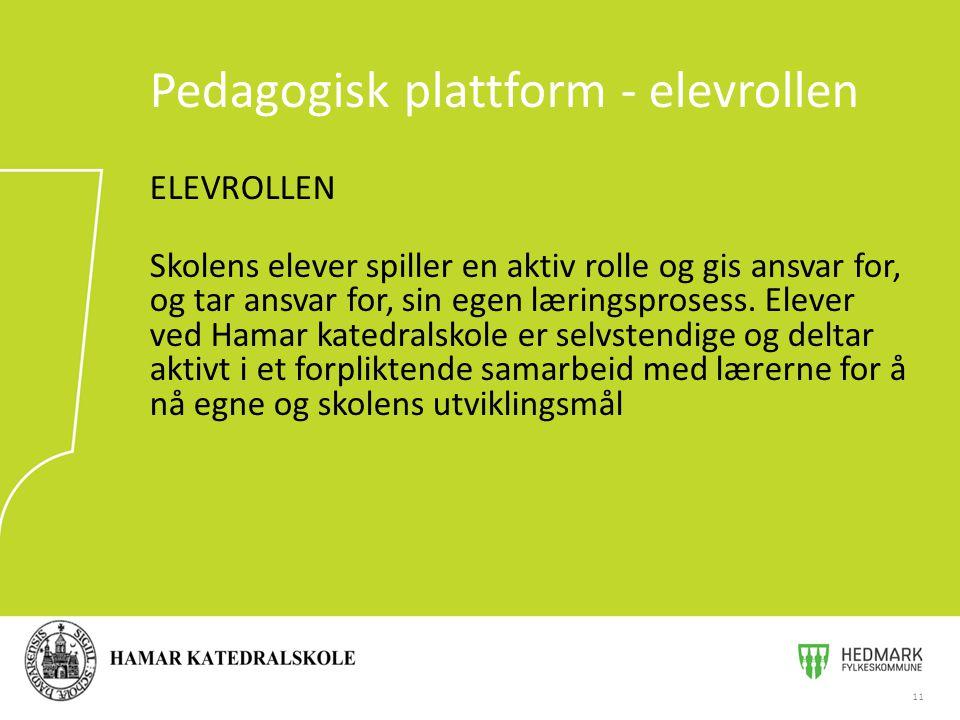 Pedagogisk plattform - elevrollen