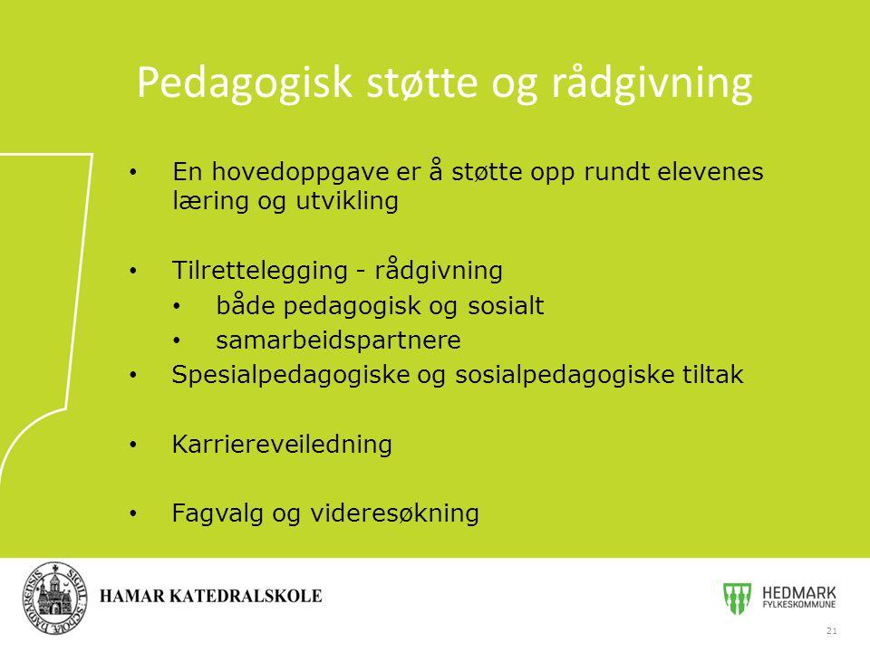 Pedagogisk støtte og rådgivning