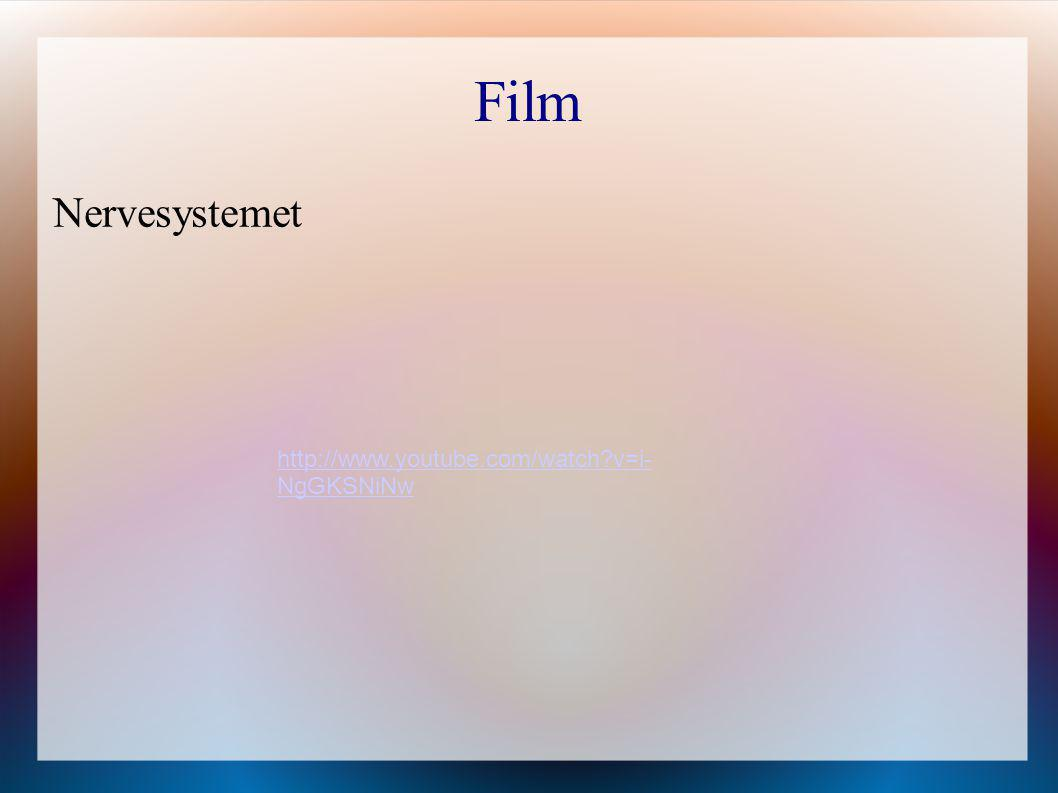 Film Nervesystemet http://www.youtube.com/watch v=i-NgGKSNiNw
