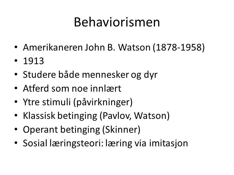 Behaviorismen Amerikaneren John B. Watson (1878-1958) 1913