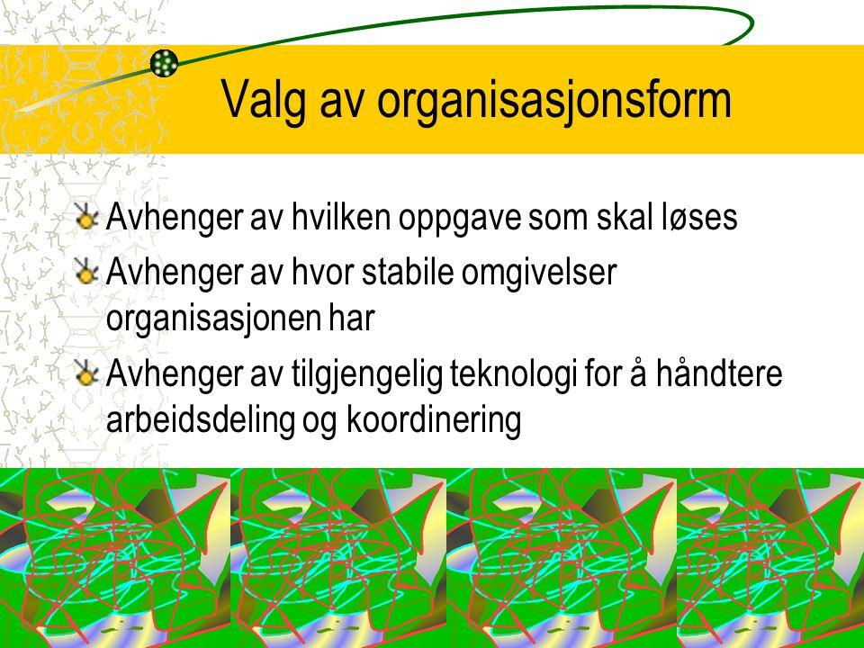 Valg av organisasjonsform